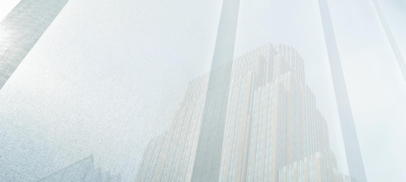 Panel Japones Skyline ®